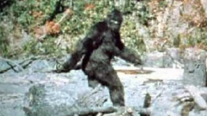 Patterson Bigfoot image