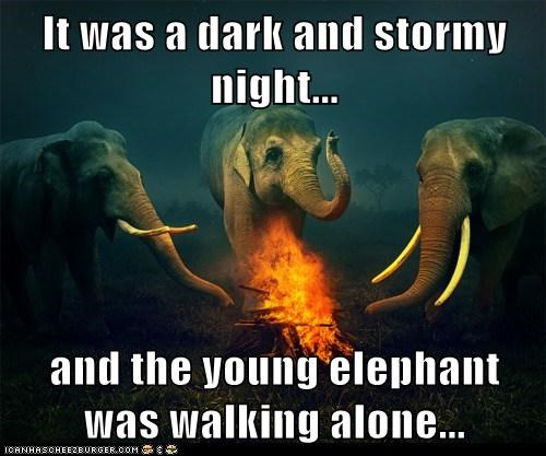 "Meme of three elephants sitting around the campfire.  Text reads ""It was a dark and stormy night... and the young elephant was walking alone..."""